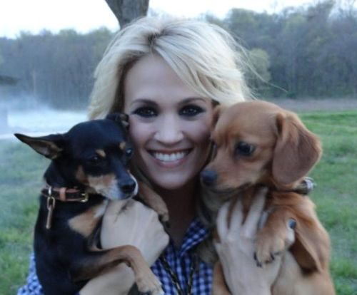 Carrie Underwood and the pooches