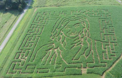 Kellie Pickler corn maze