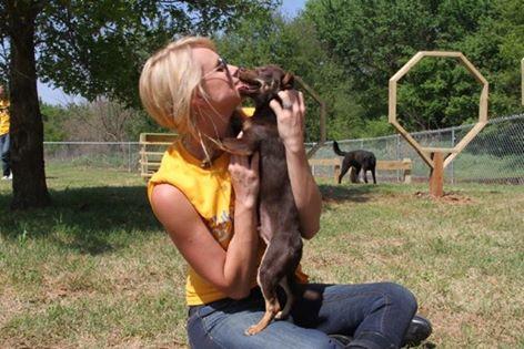 Miranda Lambert shelter story