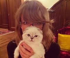 Taylor Swift olivia benson
