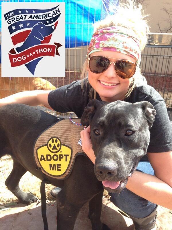 Miranda Lambert pet adoption